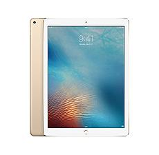 Reparatur iPad Pro 12.9