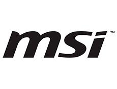 Logo msi